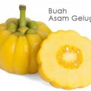 buah gelugur 2